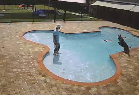Dutch Pool A