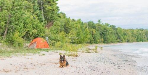 aslan-and-tent-beach