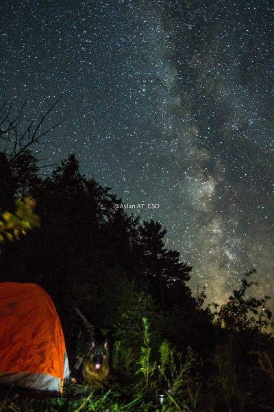 aslan-and-tent-milkyway