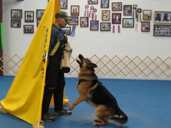 11. 2-01-14  Training (15)