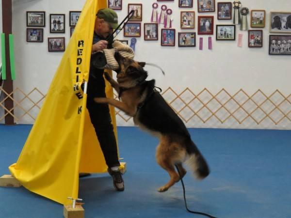 11. 2-01-14  Training (17)