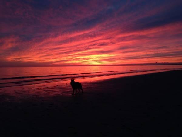 6. 1-15-14 Aiden - sunset on Bank St. Beach (1)