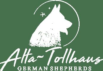 Alta Logo White